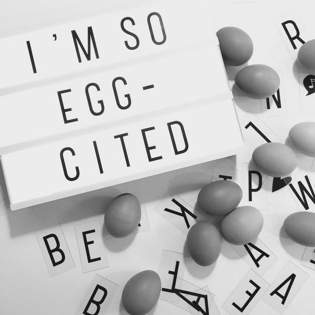 Eieren | zo vervang je ze in recepten